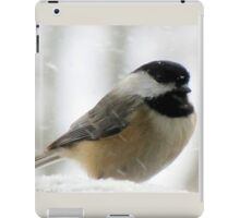 Chickadee In Snowstorm iPad Case/Skin