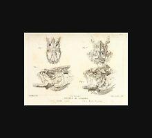 Natural History Fish Histoire naturelle des poissons Georges V1 V2 Cuvier 1849 120 Unisex T-Shirt