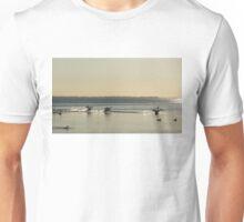 Commotion on the Lake Unisex T-Shirt