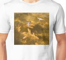 Gold Fall - Oak Leaves Floating in a Fountain Unisex T-Shirt