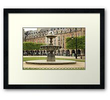 Fountain and Loops Framed Print