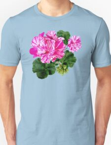 Two Pink and White Striped Geraniums T-Shirt