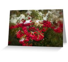 White on Red Greeting Card