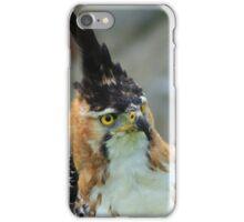 Ornate Hawk Eagle iPhone Case/Skin