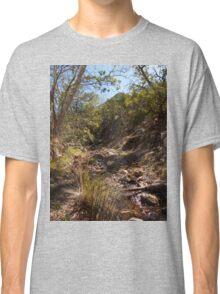 Hiking in Madera Canyon, Arizona Classic T-Shirt