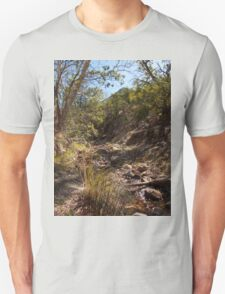 Hiking in Madera Canyon, Arizona Unisex T-Shirt
