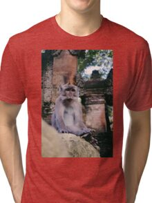 Watching Monkey Tri-blend T-Shirt