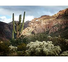 Arch in the Canyon Photographic Print