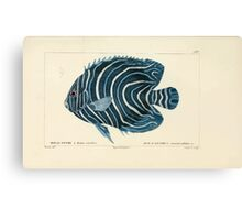 Natural History Fish Histoire naturelle des poissons Georges V1 V2 Cuvier 1849 063 Canvas Print