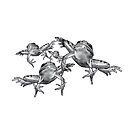 Leaping Frogs, Original Pencil Drawing by Joyce Geleynse