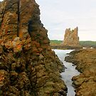 Cathedral Rocks at Bombo by Michael Matthews