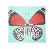 88 Butterfly Scarf