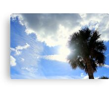 The Sun and the Palm Tree Canvas Print