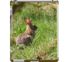 Some-bunny's looking for Beatrix Potter! iPad Case/Skin