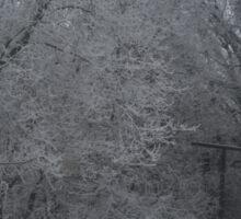 Outdoor Winter Wonderland Sticker