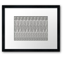 Feather Pattern   Grey & White Framed Print