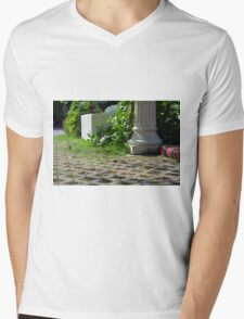 Detail of decoration in the park with column and vegetation. Mens V-Neck T-Shirt