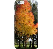 Awesome Autumn iPhone Case/Skin