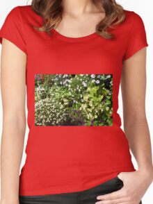 Colorful, many small flowers in the garden. Women's Fitted Scoop T-Shirt
