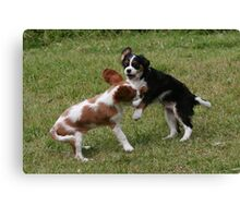 Puppies At Play Canvas Print