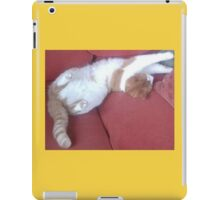 Rippley Ginger Spice & Soft White Male Cat called Zimbabar iPad Case/Skin