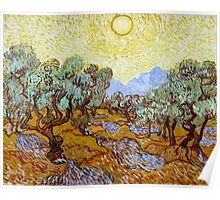 Vincent van Gogh Olive Trees Poster