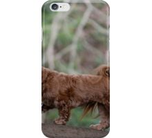 Intrepid Adventurer iPhone Case/Skin