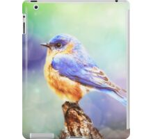 Silent Reverie iPad Case/Skin