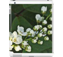 Blossoms 2 iPad Case/Skin