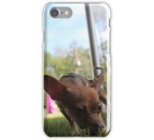 Small Dog Big World iPhone Case/Skin