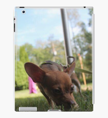 Small Dog Big World iPad Case/Skin