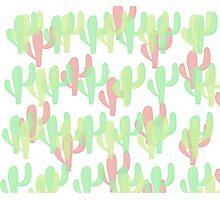 Coloured Cactus Photographic Print