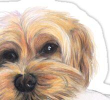 Portrait of Willow Sticker