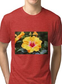 Hibiscus Beauty Tri-blend T-Shirt