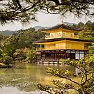 The Golden Pavilion by vividpeach