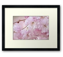 In the pink #2 Framed Print