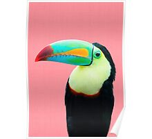 Tropical#3 - Colorful Toucan Poster