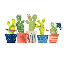 cacti party Photographic Print