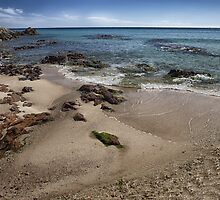 Beach with rocks by Alessandra Antonini
