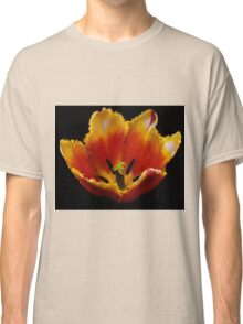 Special red and yellow tulip Classic T-Shirt
