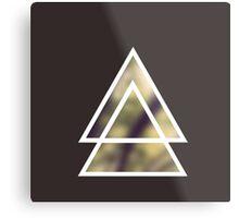 triangles nature / triángulos naturaleza Metal Print