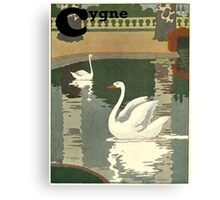 Swan / Cygne - French Alphabet Animals Canvas Print