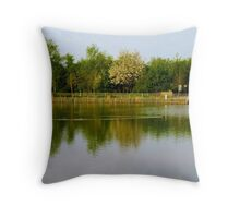 Reflection Landscape Throw Pillow