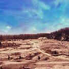 Castalia Quarry Reserve Dreamscape by Shawna Rowe