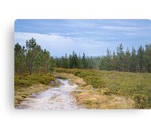 Idyllic landscape in Miraz Metal Print