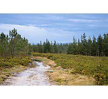 Idyllic landscape in Miraz Photographic Print