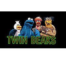 Twin Beaks Photographic Print