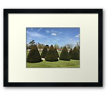 Topiary at Littlecote House Framed Print
