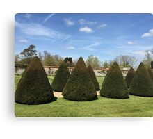 Topiary at Littlecote House Canvas Print