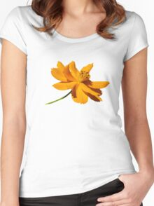Cosmos Women's Fitted Scoop T-Shirt